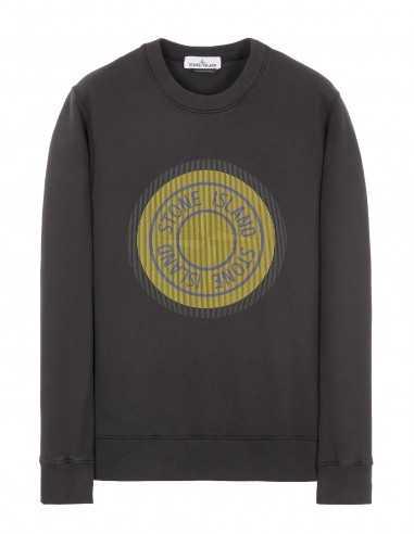 Sweatshirt imprimé Gris Anthracite - Stone Island Homme à Toulouse